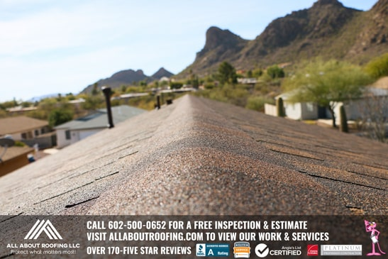 Shingle Roof Replacement Company